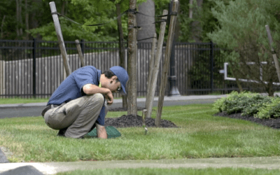 Irrigation System Installations, Maintenance and Repairs – Greater Boston