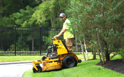 Now hiring for our landscape management division